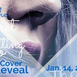 Cover Reveal: The Secret to Letting Go by Katherine Fleet