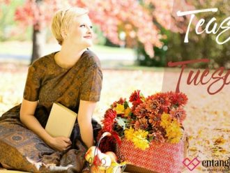 Teaser Tuesday: Lions and Tigers and Boys by Tawny Stokes!
