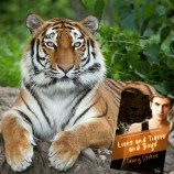 Swoon Sunday with Cai Coppersmith from Lions and Tigers and Boys by Tawny Stokes!