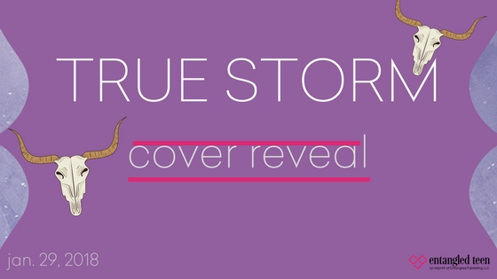 True Storm by L.E. Sterling Cover Reveal