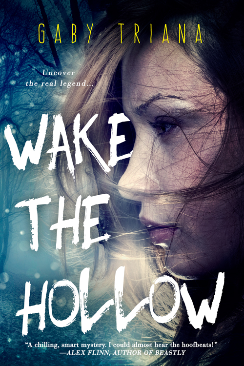 WAKE THE HOLLOW 500x700